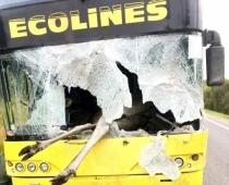 Šaušalīgā autokatastrofā Līvānos alnis ielido pasažieru autobusa salonā. FOTOGALERIJA